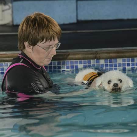 Jo Bruce - Canine Therapies therapist